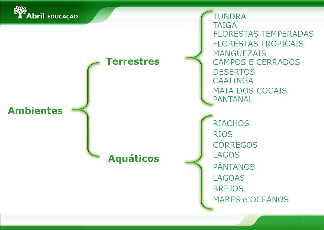 2 Ambientes Aquáticos TUNDRA FLORESTAS TEMPERADAS TAIGA FLORESTAS TROPICAIS RIACHOS RIOS CÓRREGOS LAGOS LAGOAS PÂNTANOS BREJOS MANGUEZAIS CAMPOS E CER