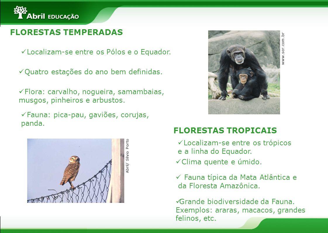 FLORESTAS TEMPERADAS FLORESTAS TROPICAIS Localizam-se entre os Pólos e o Equador. Quatro estações do ano bem definidas. Fauna: pica-pau, gaviões, coru