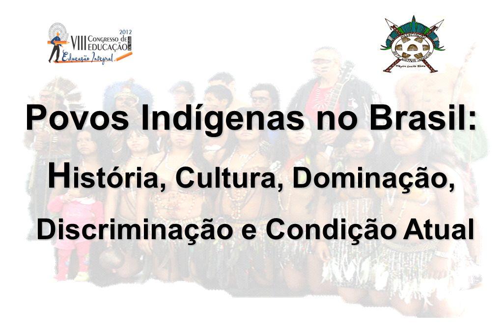 Povos Indígenas no Brasil: H istória, Cultura, Dominação, Discriminação e Condição Atual Discriminação e Condição Atual