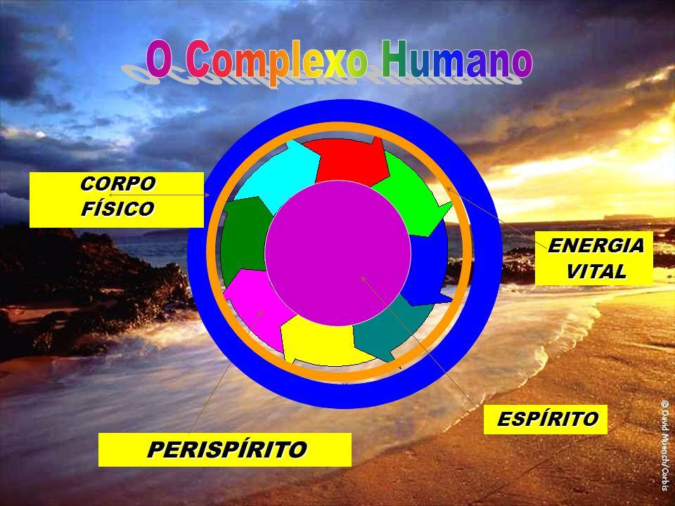METABOLIZAÇÃO ENERGIAS FLUIDOS VIBRAÇÕES E PENSAMENTOS As energias e fluidos constituintes do perispírito são oriundos da metabolização das energias e fluidos do local onde está o Espírito, ou seja, o perispírito está sempre ajustado ao meio onde se encontra o espírito.