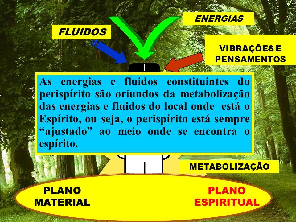 METABOLIZAÇÃO ENERGIAS FLUIDOS VIBRAÇÕES E PENSAMENTOS As energias e fluidos constituintes do perispírito são oriundos da metabolização das energias e