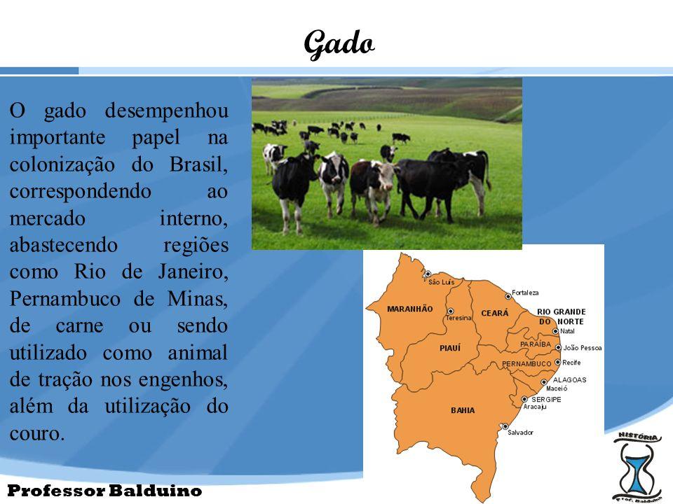 Professor Balduino Gado O gado desempenhou importante papel na colonização do Brasil, correspondendo ao mercado interno, abastecendo regiões como Rio