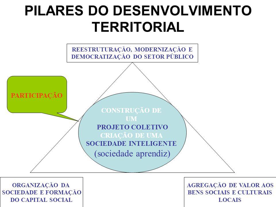 PILARES DO DESENVOLVIMENTO TERRITORIAL REESTRUTURAÇÃO, MODERNIZAÇÃO E DEMOCRATIZAÇÃO DO SETOR PÚBLICO ORGANIZAÇÃO DA SOCIEDADE E FORMAÇÃO DO CAPITAL S