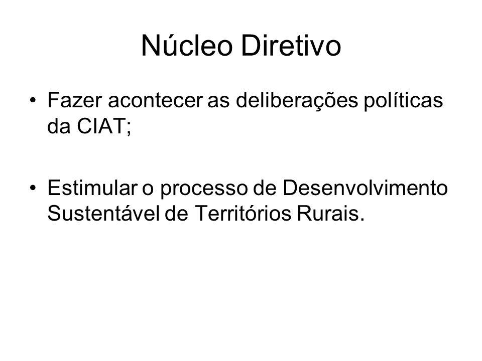 Núcleo Diretivo Fazer acontecer as deliberações políticas da CIAT; Estimular o processo de Desenvolvimento Sustentável de Territórios Rurais.