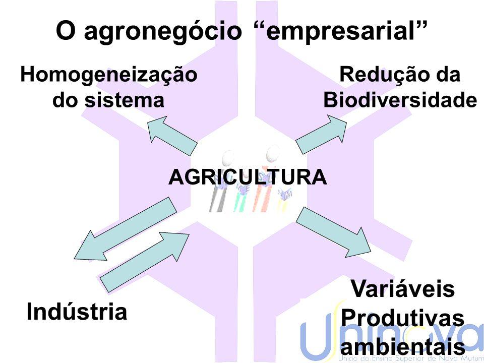 Modelos de produção EmpresarialTradicional Agronegócio