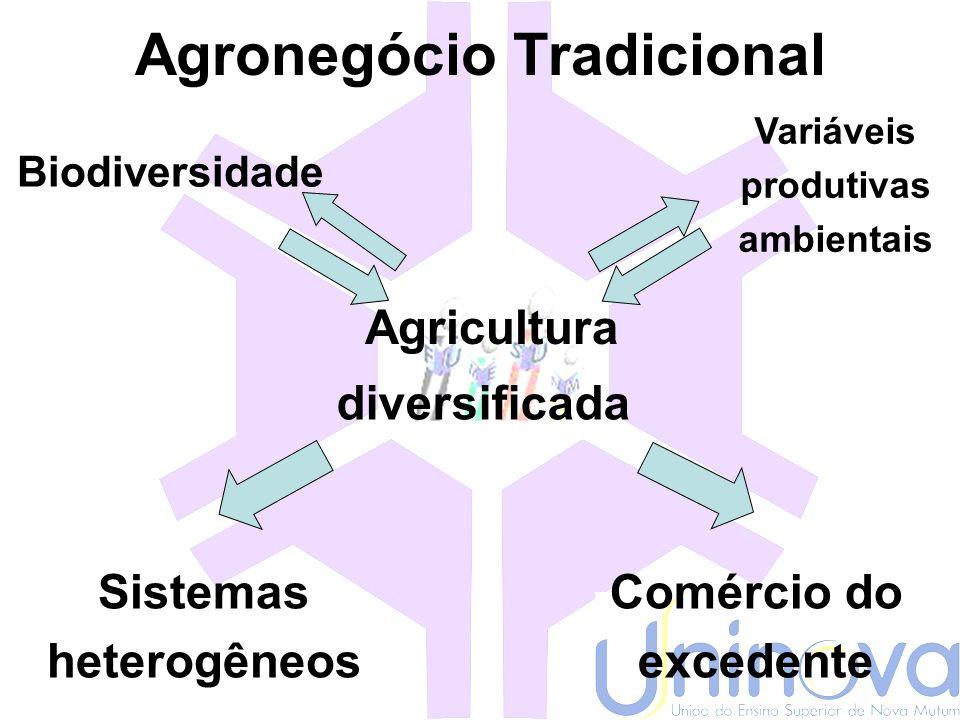 O agronegócio empresarial AGRICULTURA Indústria Variáveis Produtivas ambientais Redução da Biodiversidade Homogeneização do sistema