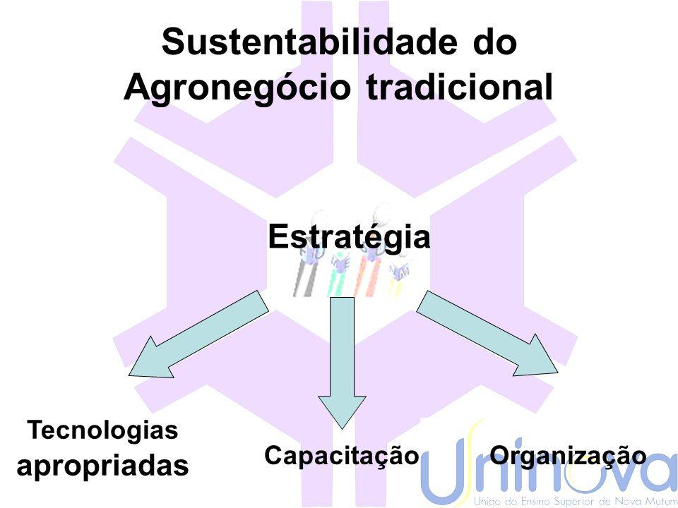 Sustentabilidade do Agronegócio Tradicional -Impactos ambientais; -Uso de insumos reduzido; -Custo de produção; -Remuneração da mão-de-obra; -Estabili