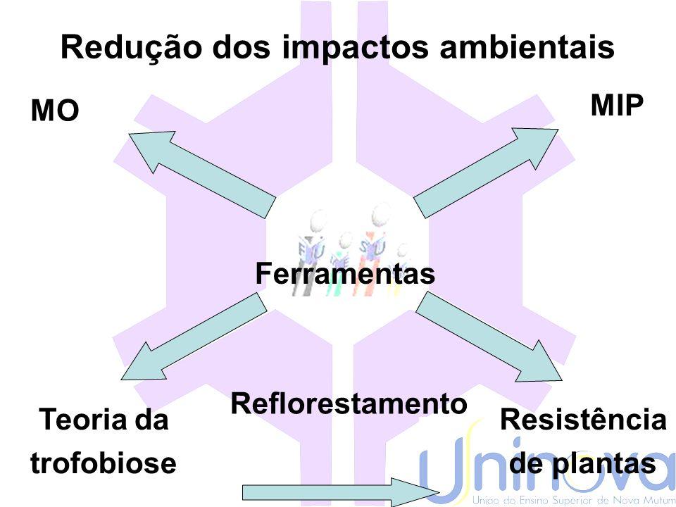 Sustentabilidade do Agronegócio Empresarial Dificuldades -Esgotamento minerais (P 2 O 5, K 2 O); -Alto custo dos insumos; -Poluição e assoreamento dos