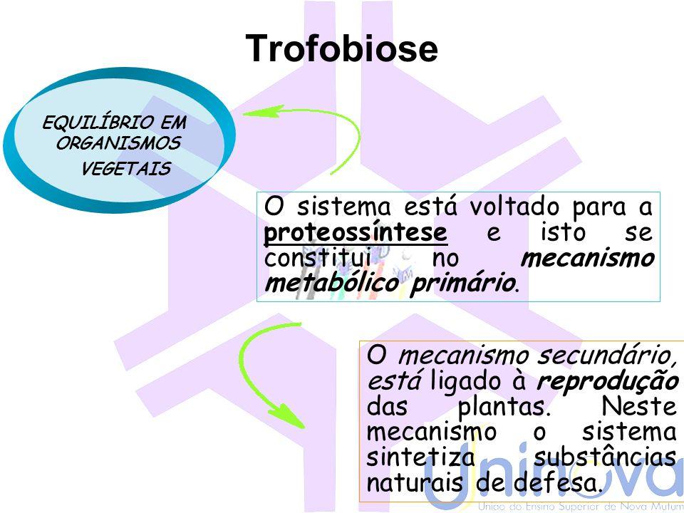 Redução dos impactos ambientais Ferramentas Teoria da trofobiose MO Resistência de plantas MIP Reflorestamento