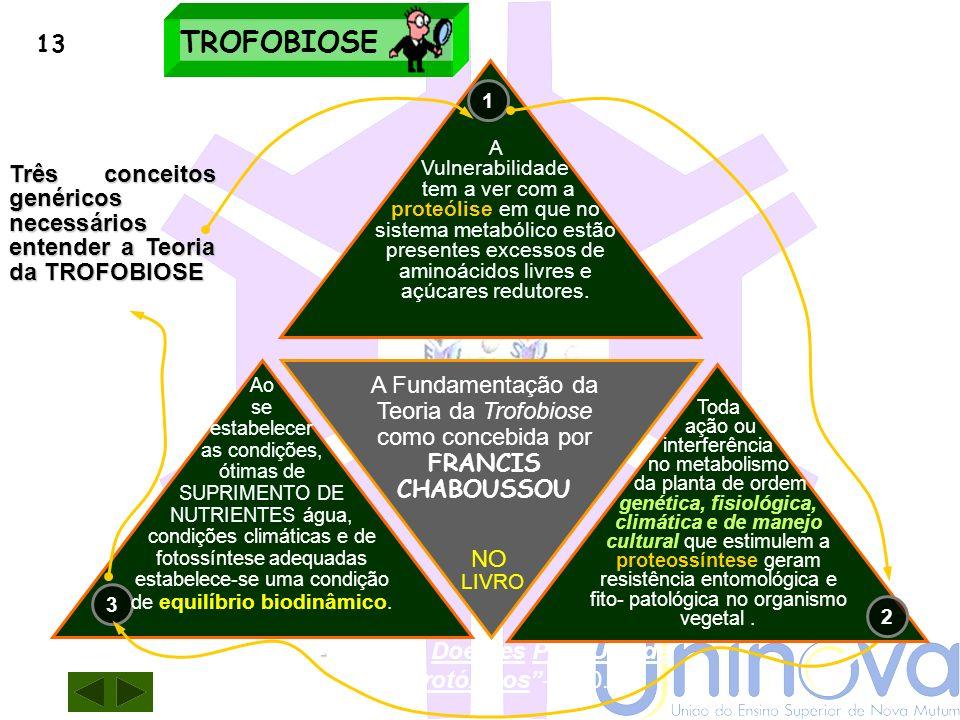 Trofobiose EQUILÍBRIO EM ORGANISMOS VEGETAIS O sistema está voltado para a proteossíntese e isto se constitui no mecanismo metabólico primário. O meca