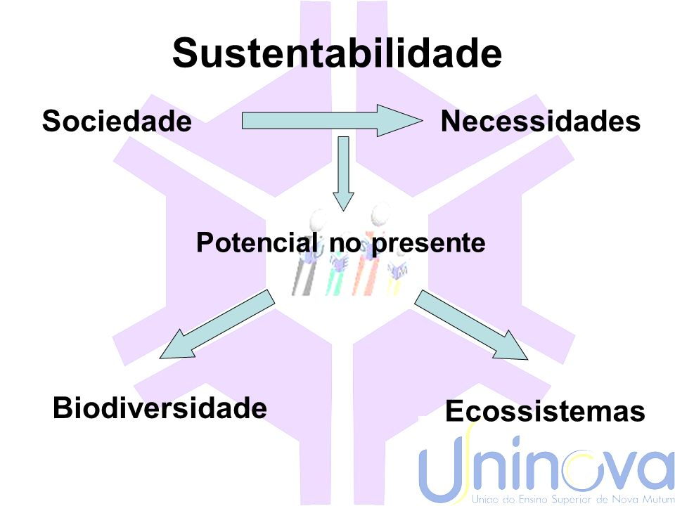 Sustentabilidade e desenvolvimento sustentável Desenvolvimento Sustentável Visão econômica Da natureza Elder Andrade e Ariovaldo Umbelino UFAC & USP C