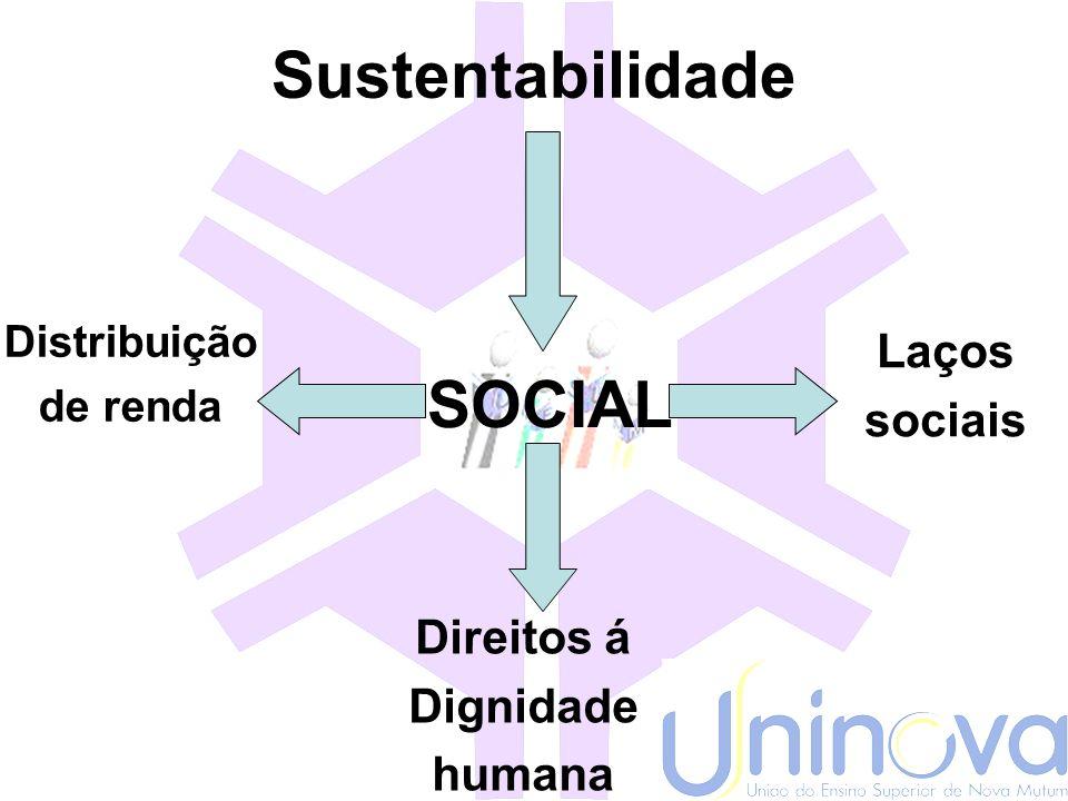 Sustentabilidade Desenvolvimento econômico Ser humano Equilíbrio ecológico Gerações futuras