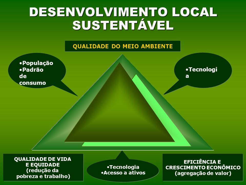 MJ SOLUTIONS 21 DESENVOLVIMENTO LOCAL SUSTENTÁVEL QUALIDADE DO MEIO AMBIENTE QUALIDADE DE VIDA E EQUIDADE (redução da pobreza e trabalho) EFICIÊNCIA E CRESCIMENTO ECONÔMICO (agregação de valor) Tecnologi a Acesso a ativos População Padrão de consumo