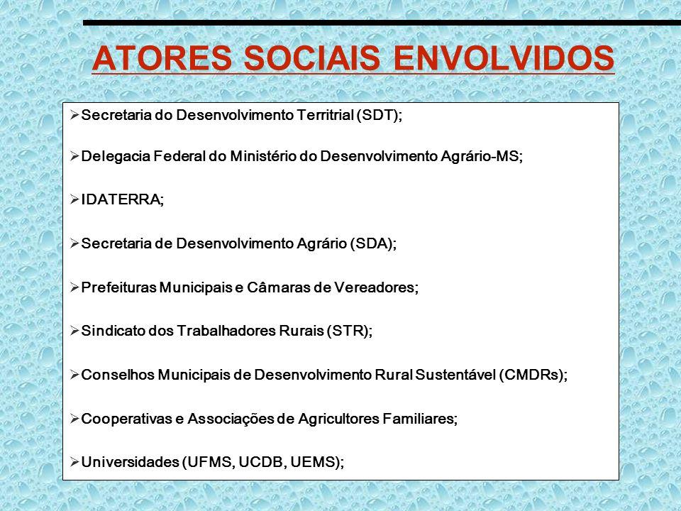 ATORES SOCIAIS ENVOLVIDOS Secretaria do Desenvolvimento Territrial (SDT); Delegacia Federal do Ministério do Desenvolvimento Agrário-MS; IDATERRA; Sec