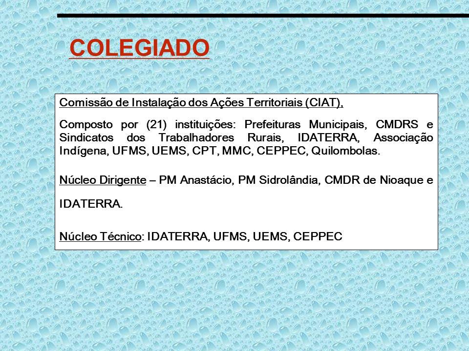 COLEGIADO Comissão de Instalação dos Ações Territoriais (CIAT), Composto por (21) instituições: Prefeituras Municipais, CMDRS e Sindicatos dos Trabalh