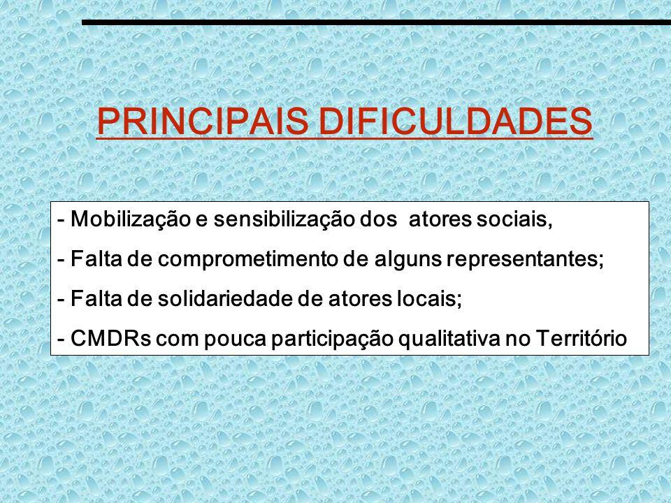 PRINCIPAIS DIFICULDADES - Mobilização e sensibilização dos atores sociais, - Falta de comprometimento de alguns representantes; - Falta de solidarieda
