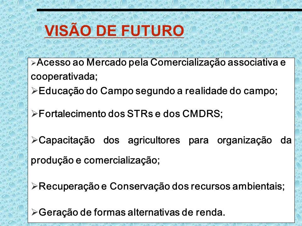 VISÃO DE FUTURO Acesso ao Mercado pela Comercialização associativa e cooperativada; Educação do Campo segundo a realidade do campo; Fortalecimento dos