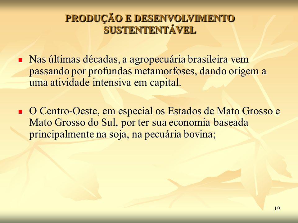 19 PRODUÇÃO E DESENVOLVIMENTO SUSTENTENTÁVEL Nas últimas décadas, a agropecuária brasileira vem passando por profundas metamorfoses, dando origem a um