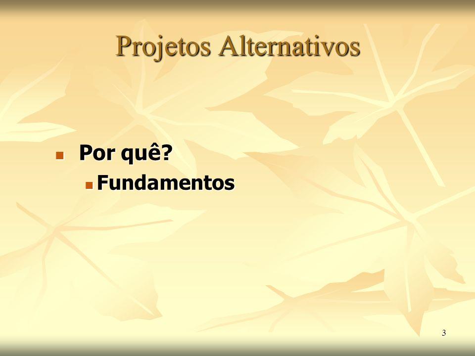 3 Por quê? Por quê? Fundamentos Fundamentos Projetos Alternativos