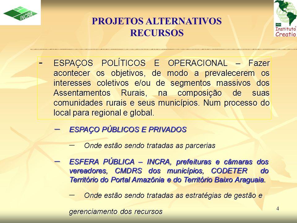 5 Assentamentos Rurais Selecionados ProjetosAlternativos ORGANIZAÇÃO DIREÇÃO/COORDENAÇÃO PROCESSO DE IMPLANTAÇÃO MONITORAMENTO /AVALIAÇÃO SENSIBILIZAÇÃO/ MOBILIZAÇÃO - DIAGNÓSTICO E CONSULTA A POPULAÇÃO - VISÃO DE FUTURO - PLANIFICAÇÃO OBJETIVOS OBJETIVOS DIRETRIZES DIRETRIZES ESTRATÉGIAS ESTRATÉGIAS PROGRAMAS E PROJETO PROGRAMAS E PROJETO – ARTICULAÇÃO – BUSCA DE PARCERIAS – NEGOCIAÇÃO – AJUSTES – DIVISÃO DE TAREFAS