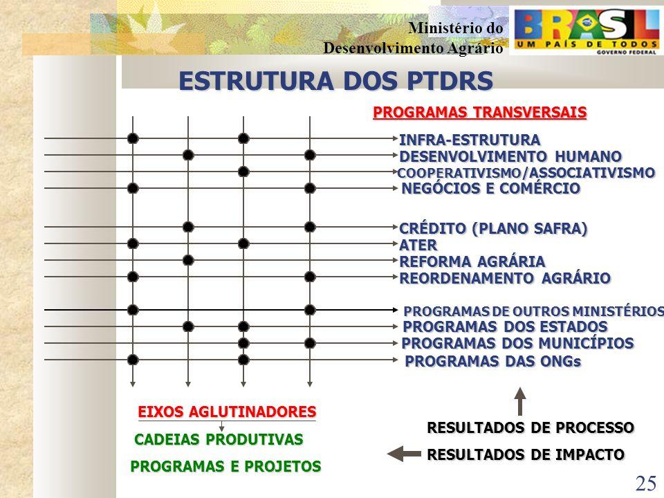 24 Ministério do Desenvolvimento Agrário Características do Plano Territorial de Desenvolvimento Rural Sustentável Ser um instrumento de gestão partic