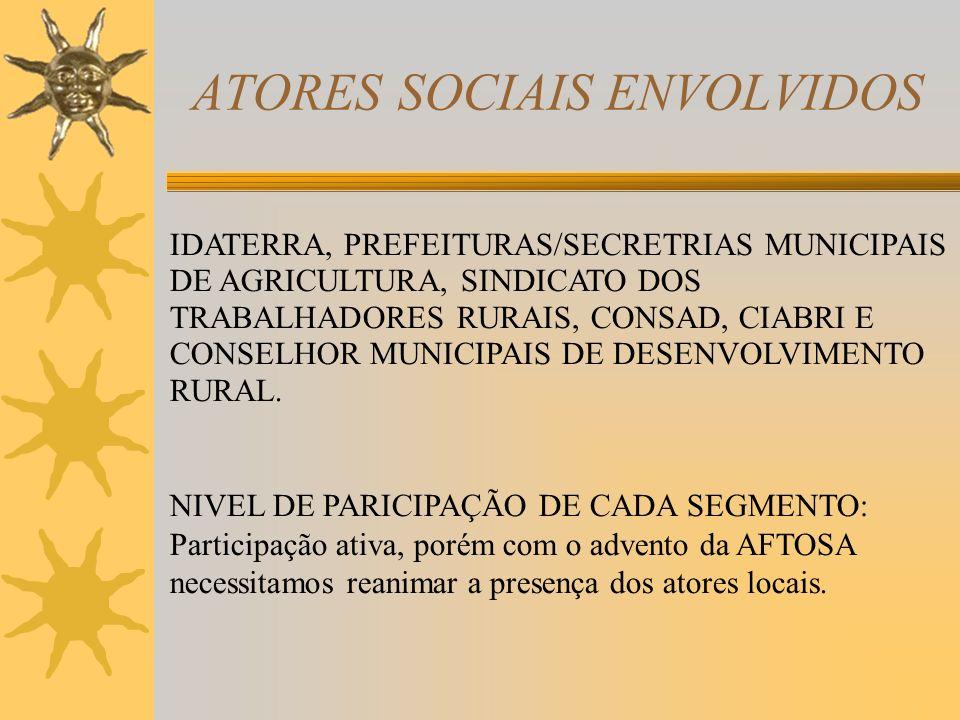 ATORES SOCIAIS ENVOLVIDOS IDATERRA, PREFEITURAS/SECRETRIAS MUNICIPAIS DE AGRICULTURA, SINDICATO DOS TRABALHADORES RURAIS, CONSAD, CIABRI E CONSELHOR MUNICIPAIS DE DESENVOLVIMENTO RURAL.