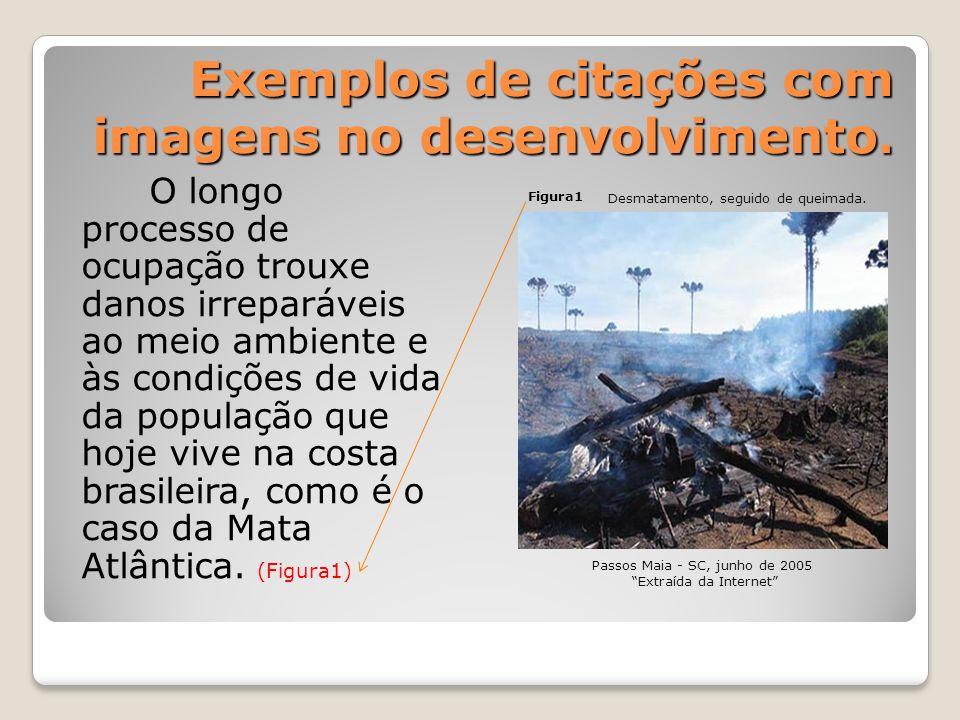 Exemplos de citações com imagens no desenvolvimento. O longo processo de ocupação trouxe danos irreparáveis ao meio ambiente e às condições de vida da