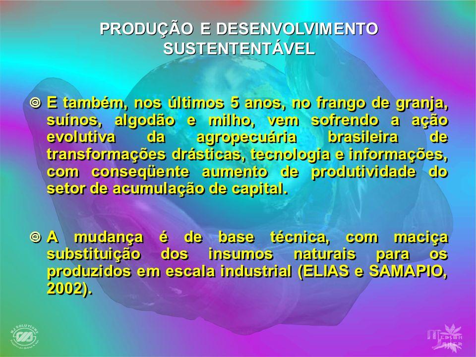 Este processo iniciou-se, principalmente, nos primeiros anos da década de oitenta, com a implantação de uma série de pequenas indústrias substitutivas de importações (do mercado interno).