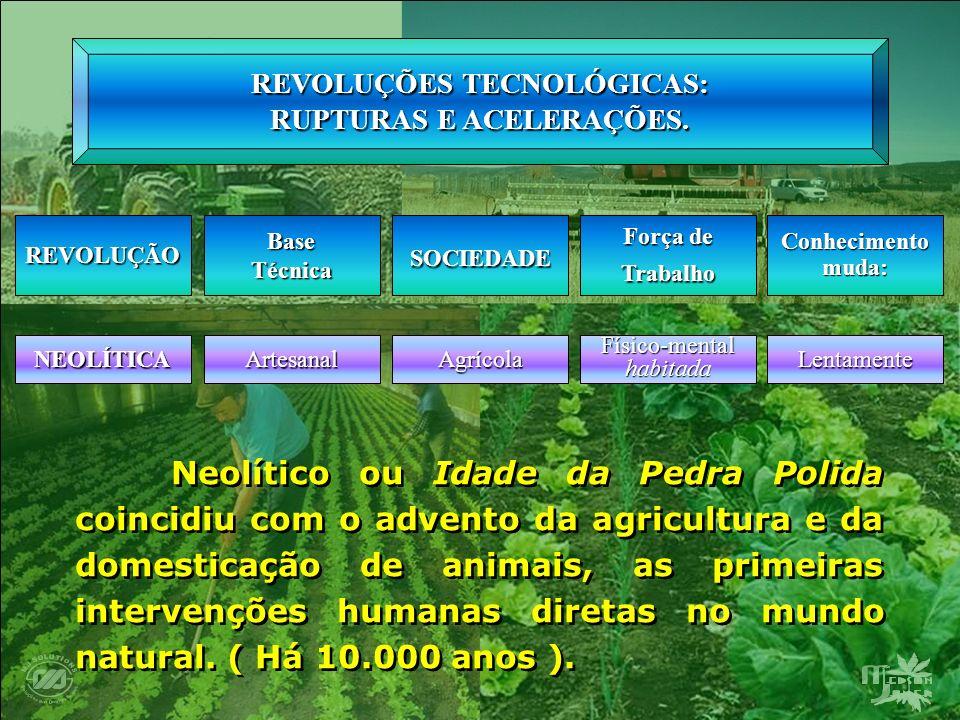 Desenvolvimento da Agricultura – Competitividade dos Produtos Agrícolas Por isso, compreender os sistemas de fixos e fluxos, dos principais CAIs no Brasil (soja, suco de laranja, cana), em especial a partir de seus circuitos espaciais de produção, é um exercício de análise, tanto da produção agropecuária e agroindustrial brasileiras modernas como território por elas produzidos.