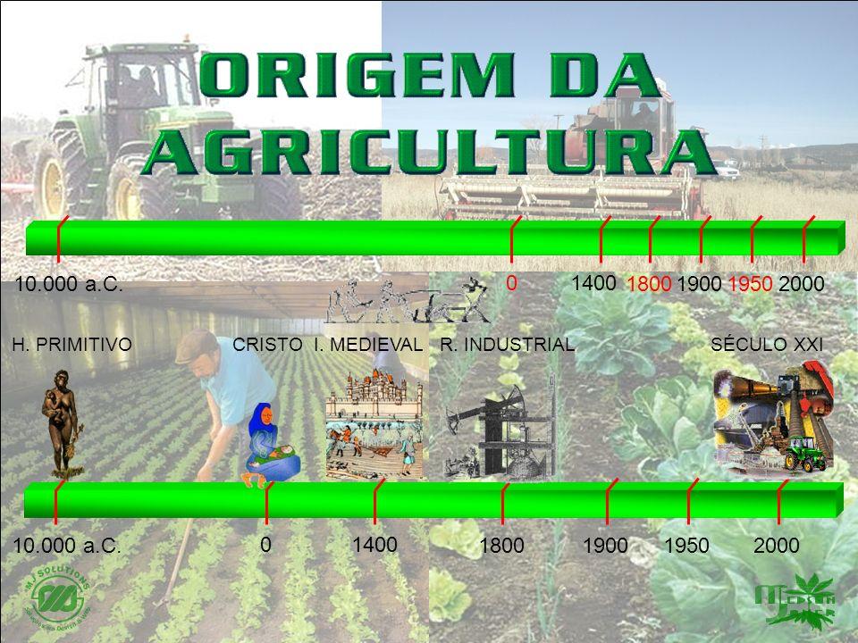 0 Agricultura Subsistência Técnicas Primárias Agricultura Subsistência Técnicas Primárias 20001800 0 19001950 1400 10.000 a.C.