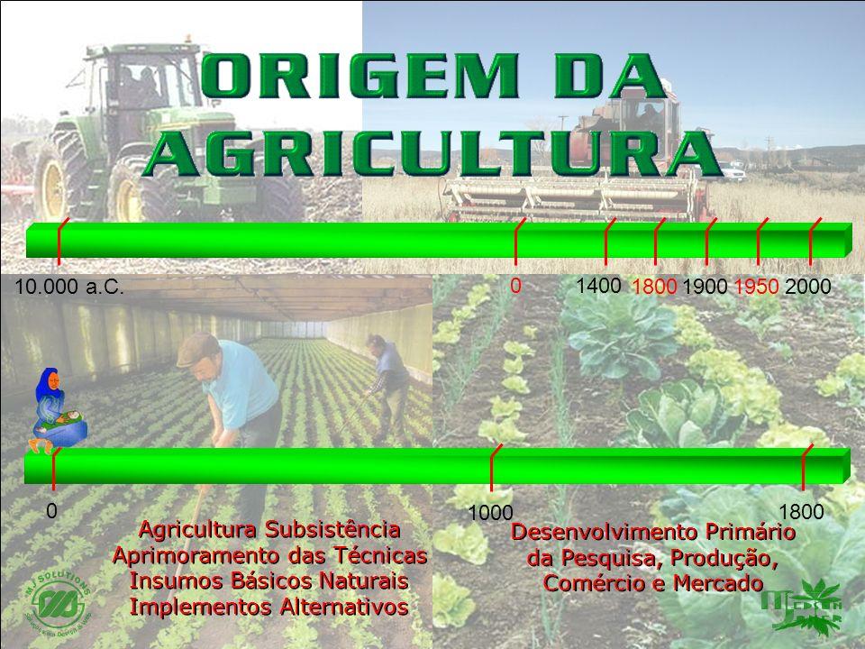 1800 0 20001800 0 19001950 1400 10.000 a.C. 1000 Agricultura Subsistência Aprimoramento das Técnicas Insumos Básicos Naturais Implementos Alternativos