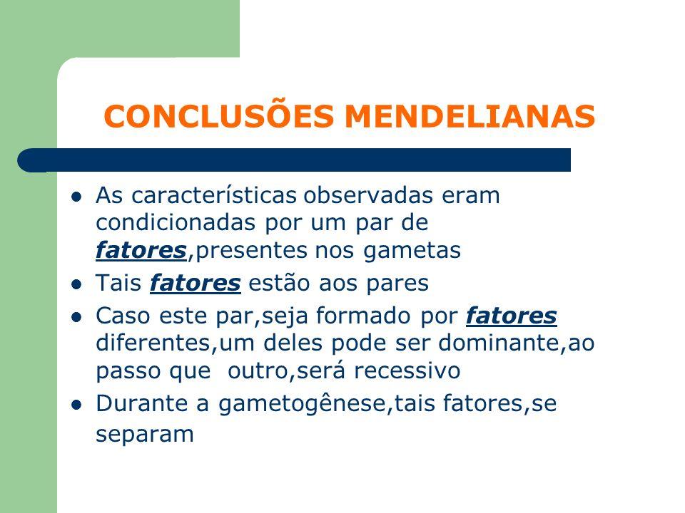 CONCLUSÕES MENDELIANAS As características observadas eram condicionadas por um par de fatores,presentes nos gametas Tais fatores estão aos pares Caso