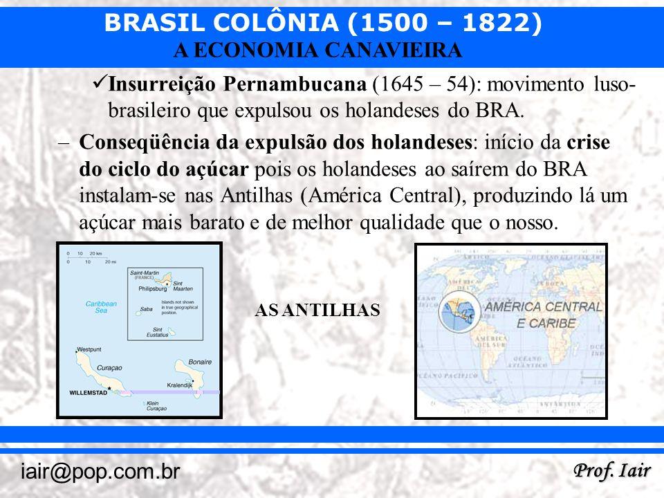 BRASIL COLÔNIA (1500 – 1822) Prof. Iair iair@pop.com.br A ECONOMIA CANAVIEIRA Insurreição Pernambucana (1645 – 54): movimento luso- brasileiro que exp