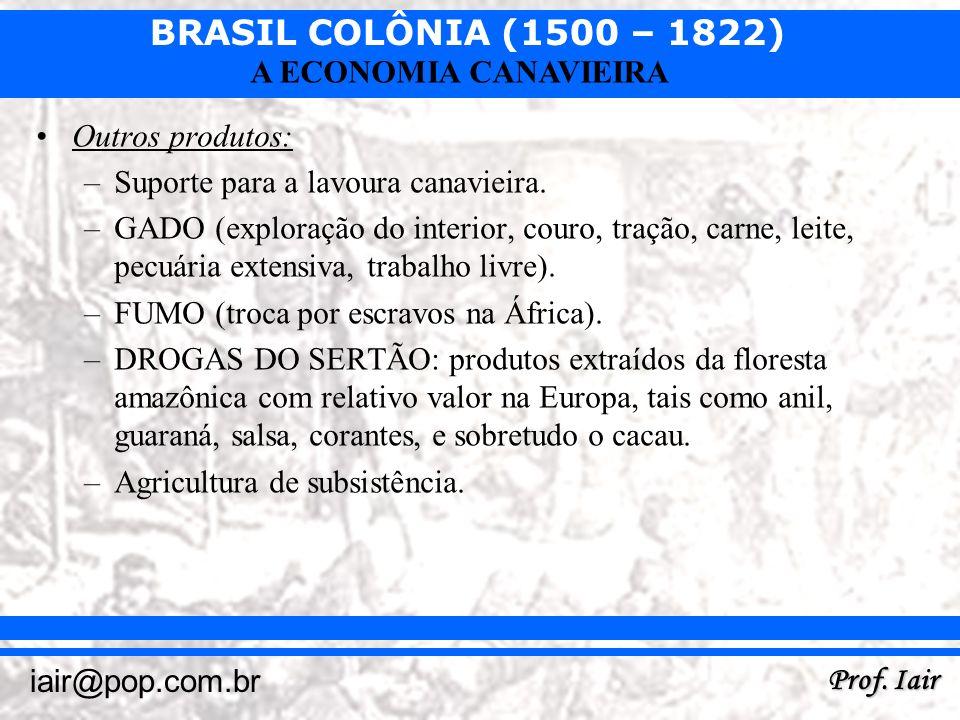 BRASIL COLÔNIA (1500 – 1822) Prof. Iair iair@pop.com.br A ECONOMIA CANAVIEIRA Outros produtos: –Suporte para a lavoura canavieira. –GADO (exploração d