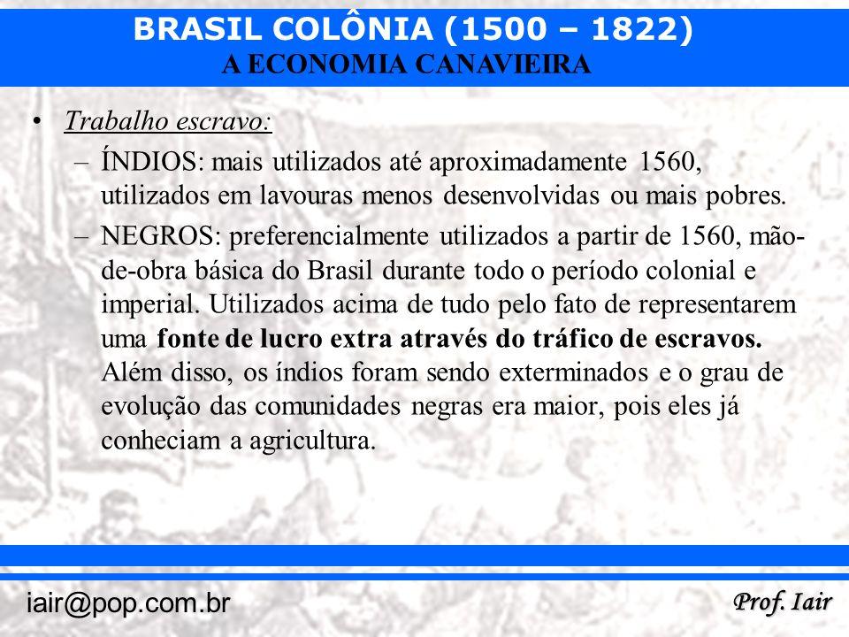 BRASIL COLÔNIA (1500 – 1822) Prof. Iair iair@pop.com.br A ECONOMIA CANAVIEIRA Trabalho escravo: –ÍNDIOS: mais utilizados até aproximadamente 1560, uti