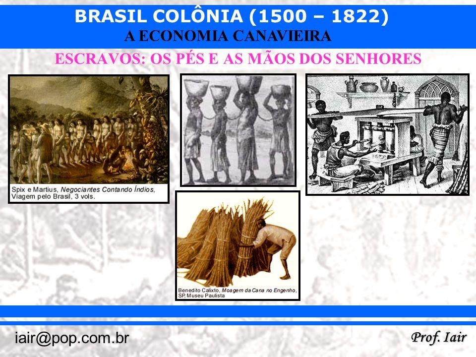 BRASIL COLÔNIA (1500 – 1822) Prof. Iair iair@pop.com.br A ECONOMIA CANAVIEIRA ESCRAVOS: OS PÉS E AS MÃOS DOS SENHORES