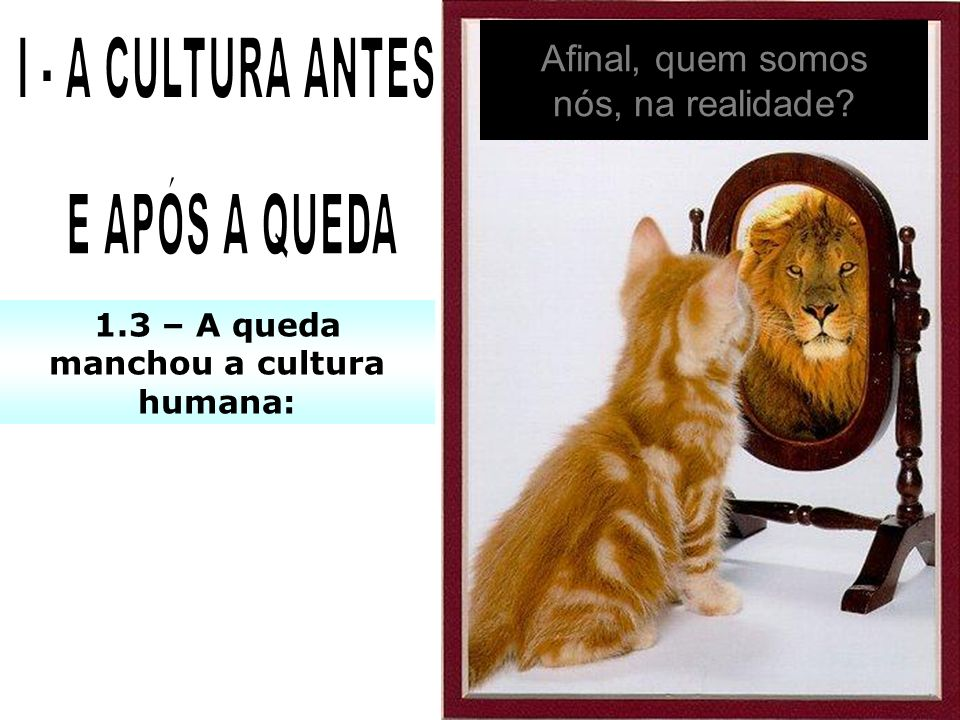 1 – O que é cultura? 2 – Por que nenhuma cultura é perfeita?