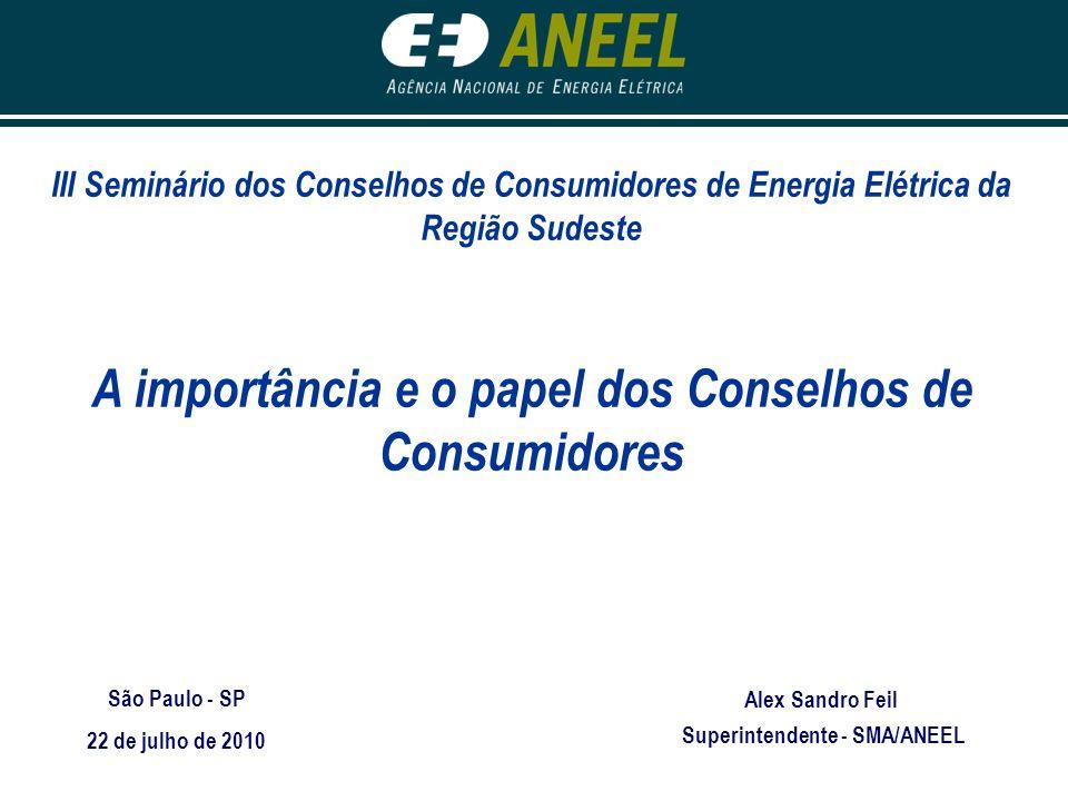 III Seminário dos Conselhos de Consumidores de Energia Elétrica da Região Sudeste A importância e o papel dos Conselhos de Consumidores São Paulo - SP