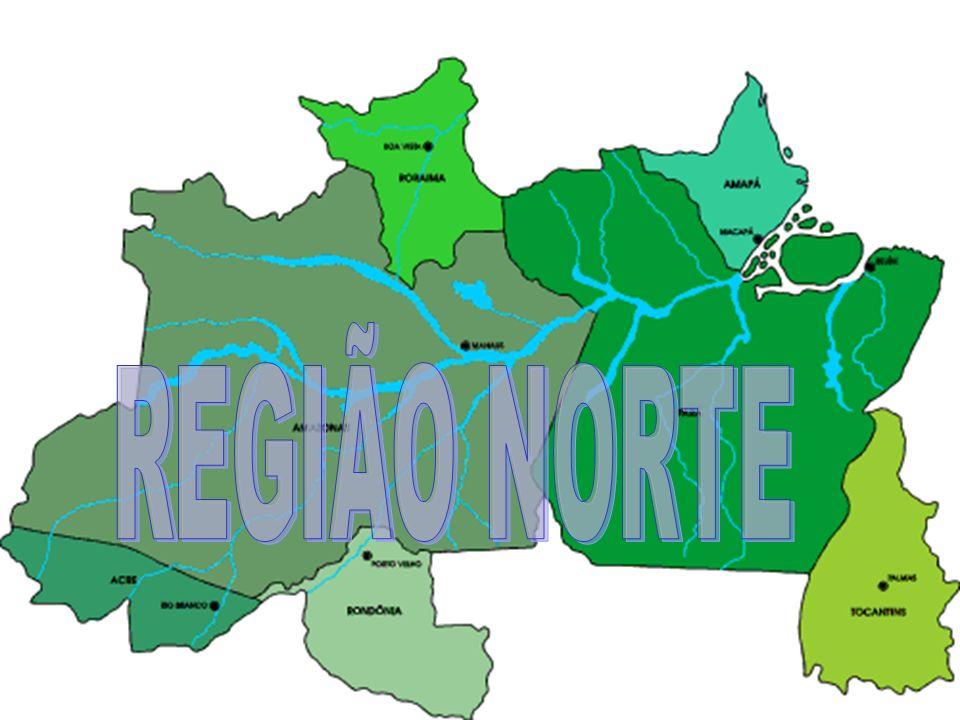 Introdução Com 3.851.557 km² a região norte do Brasil é a mais extensa das regiões brasileiras, correspondendo a pouco mais de 45% do território nacional.