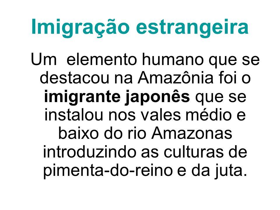 Imigração estrangeira Um elemento humano que se destacou na Amazônia foi o imigrante japonês que se instalou nos vales médio e baixo do rio Amazonas i