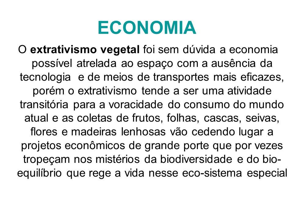 ECONOMIA O extrativismo vegetal foi sem dúvida a economia possível atrelada ao espaço com a ausência da tecnologia e de meios de transportes mais efic