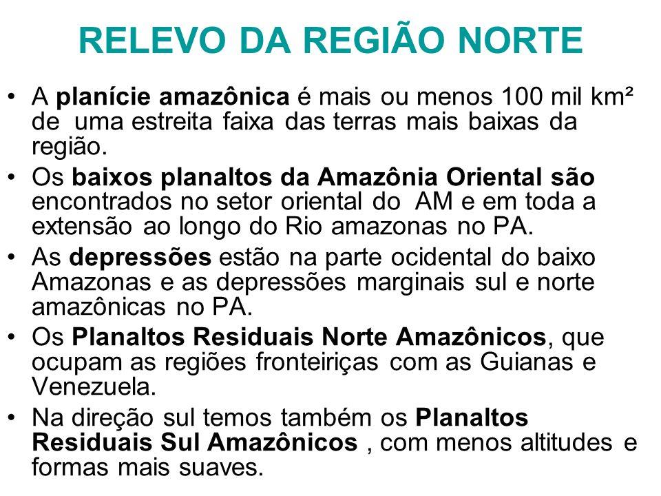 RELEVO DA REGIÃO NORTE A planície amazônica é mais ou menos 100 mil km² de uma estreita faixa das terras mais baixas da região. Os baixos planaltos da