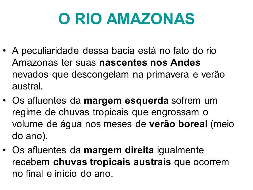 O RIO AMAZONAS A peculiaridade dessa bacia está no fato do rio Amazonas ter suas nascentes nos Andes nevados que descongelam na primavera e verão aust
