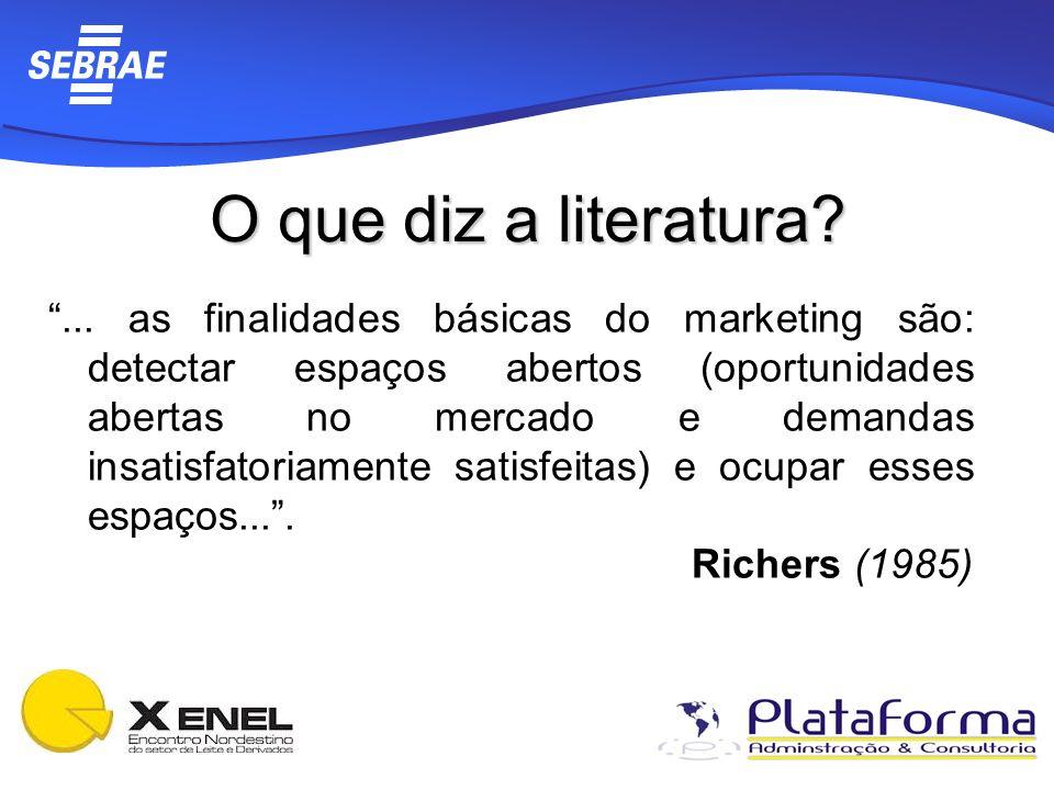 O que diz a literatura?... as finalidades básicas do marketing são: detectar espaços abertos (oportunidades abertas no mercado e demandas insatisfator