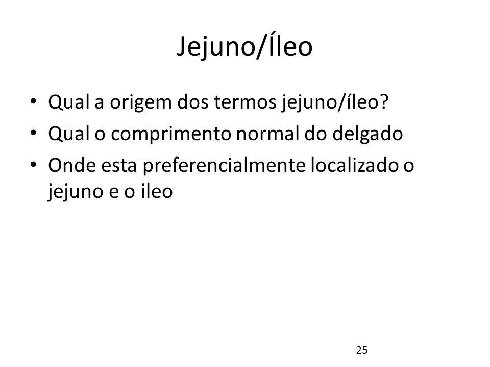 Jejuno/Íleo Jejuno: recebe este nome porque sempre que é aberto se apresenta vazio.