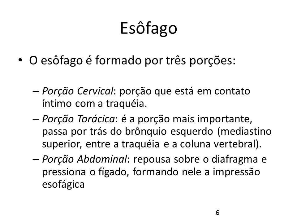 Esôfago Fonte: NETTER, Frank H.. Atlas de Anatomia Humana. 2ed. Porto Alegre: Artmed, 2000. 7