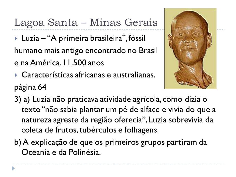 Lagoa Santa – Minas Gerais Luzia – A primeira brasileira, fóssil humano mais antigo encontrado no Brasil e na América. 11.500 anos Características afr