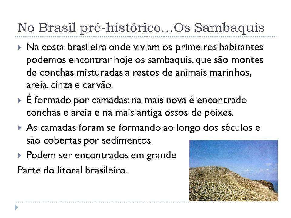 No Brasil pré-histórico...Os Sambaquis Na costa brasileira onde viviam os primeiros habitantes podemos encontrar hoje os sambaquis, que são montes de