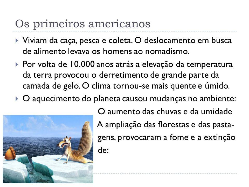 Animais da pré-história brasileira, foram extintos pelas mudanças climáticas Gliptodonte – tatu gigante Fóssil de preguiça gigante