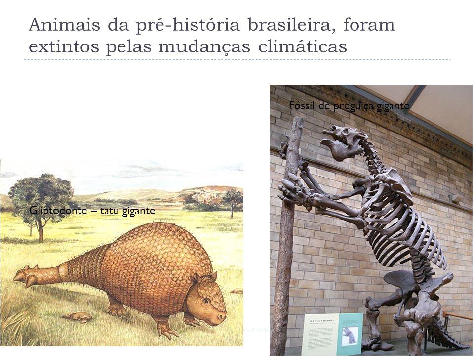 Sítios Arqueológicos (p.64) Sítio Arqueológico LocalizaçãoVestígios encontrados Idade dos objetos CLÓVISEstados Unidos Artefatos de caça, feitos de pedra Cerca de 11 mil anos MONTE VERDEAtual Chile Plantas comestíveis, ossos de animais, plantas medicinais Cerca de 13 mil anos LAGOA SANTAMinas Gerais, Brasil Machados de pedra, flechas e esqueletos (Luzia) 11.500 anos SÃO RAIMUNDO NONATO Piauí, Brasil Objetos de pedra lascada, pedaços de carvão e pinturas rupestres Cerca de 50.00 anos